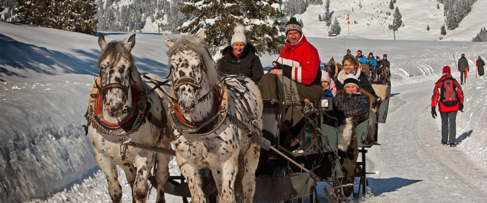 Pferdeschlittenfahrt im Tannheimer Tal