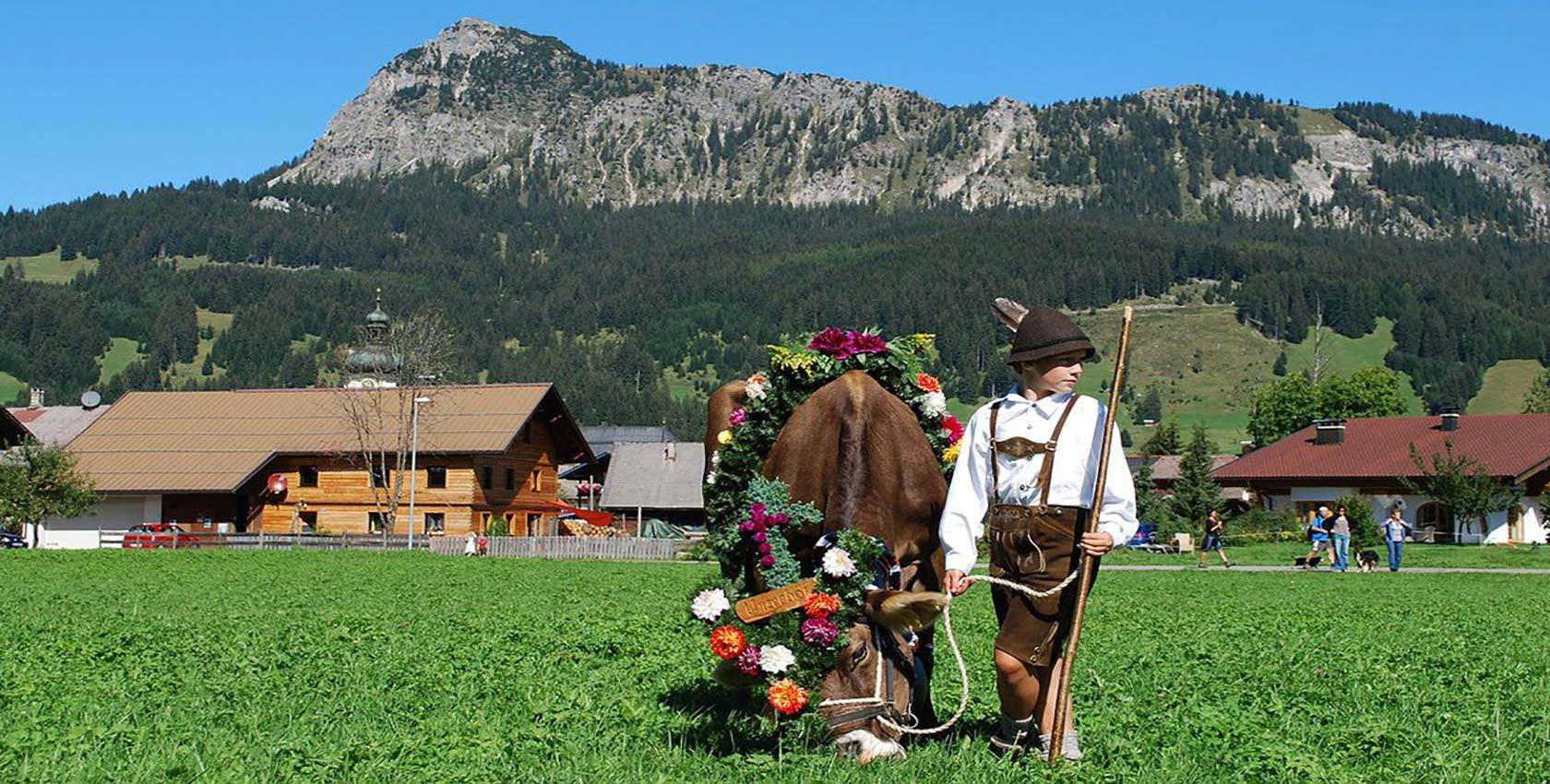 Allmabtrieb Tannheimer Tal in Tirol