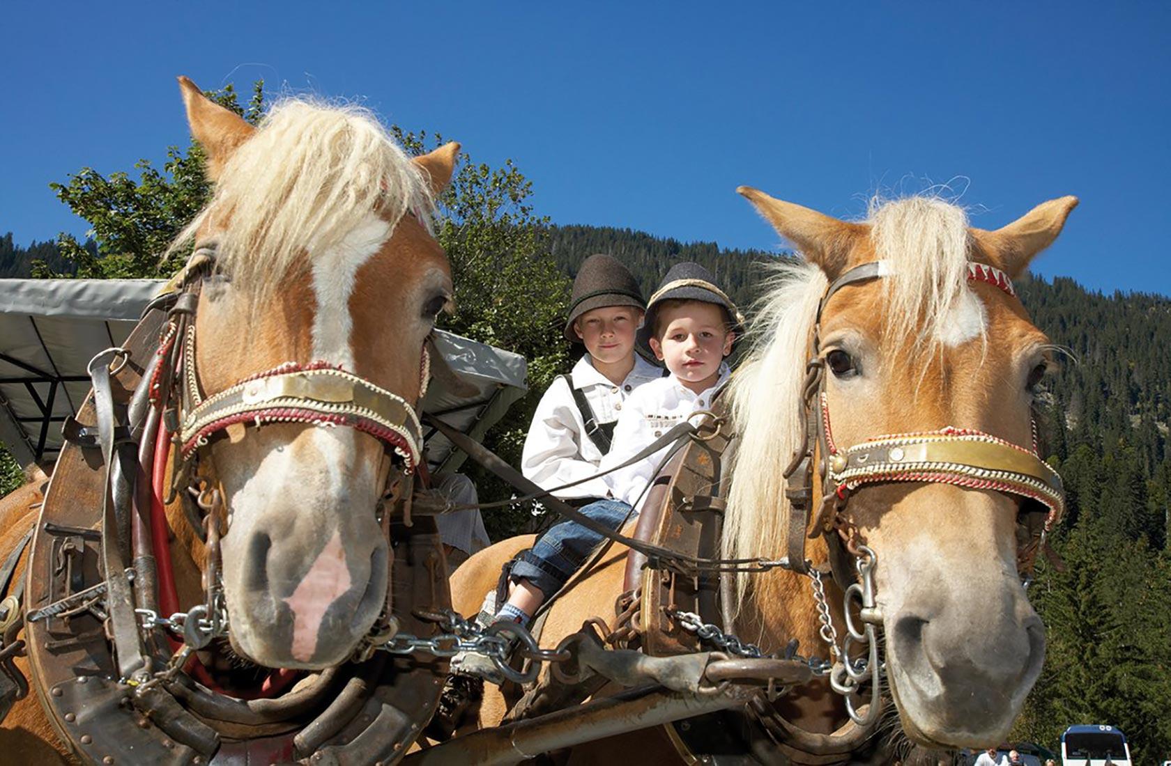 Ausflug mit Pferdekutschen