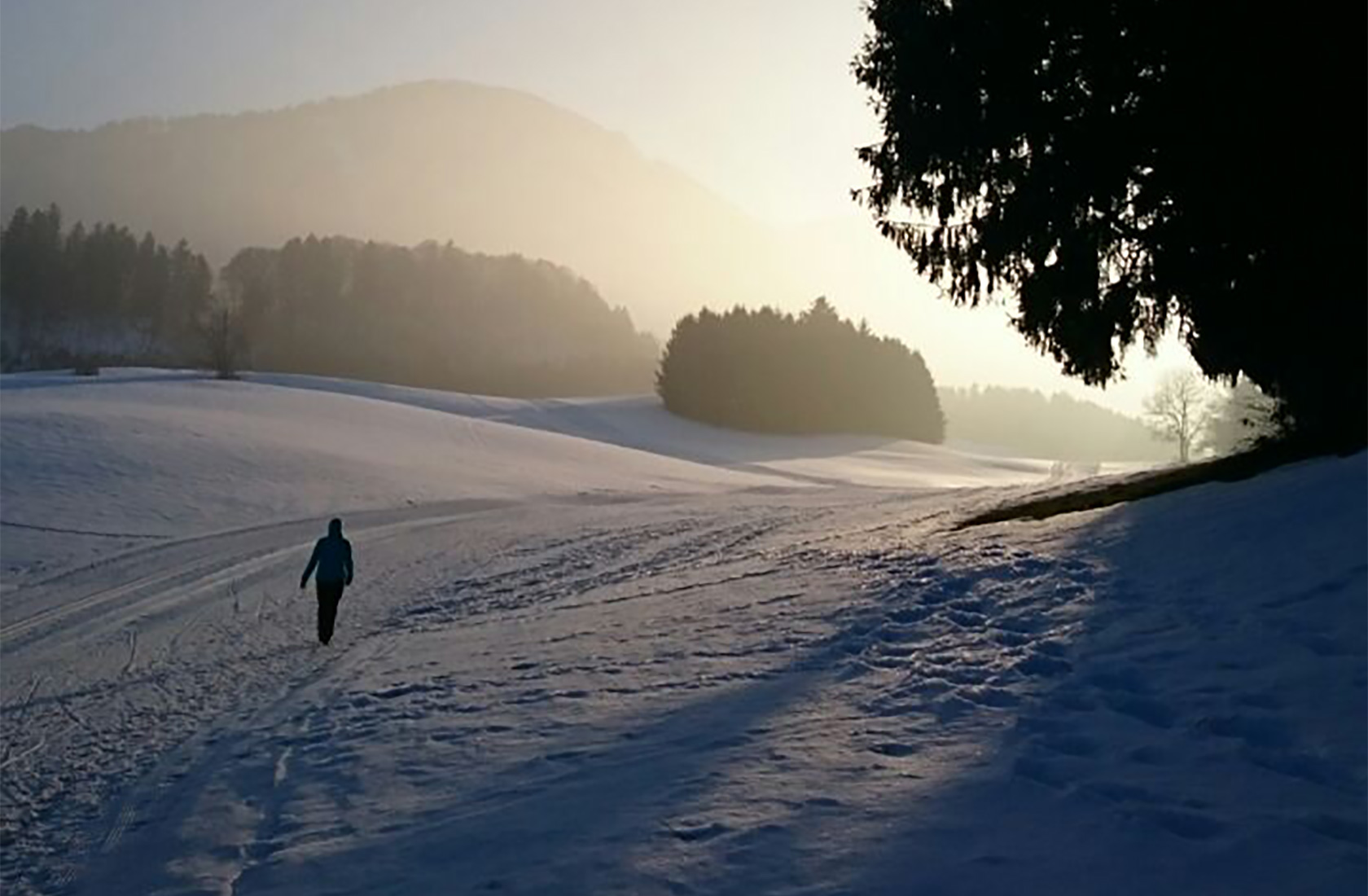 Spaziergang und Wandern im Urlaub im Tannheimer Tal in Tirol