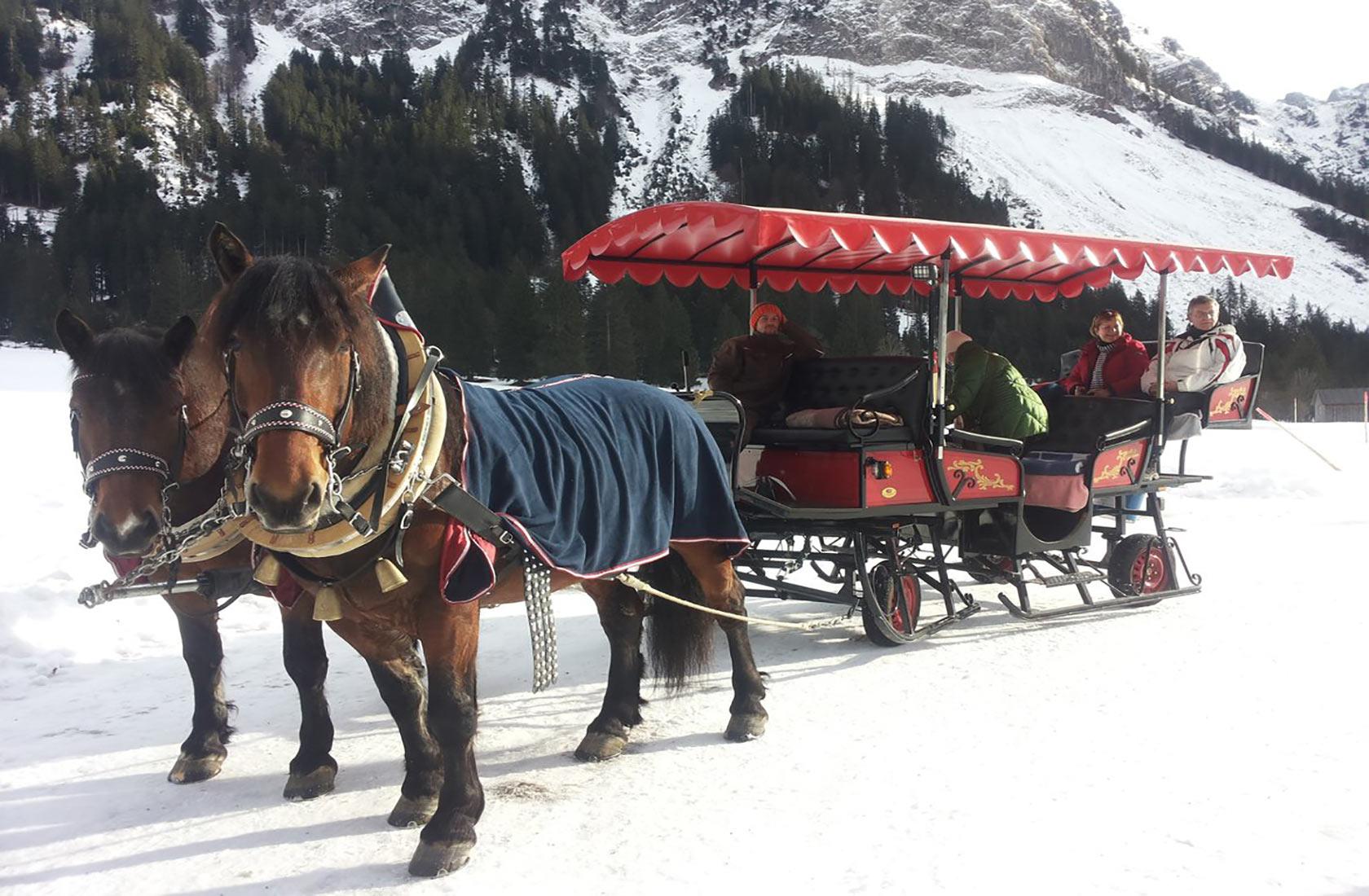 Pferdeschlittenfahrt im Winter Tannheimer Tal Tirol