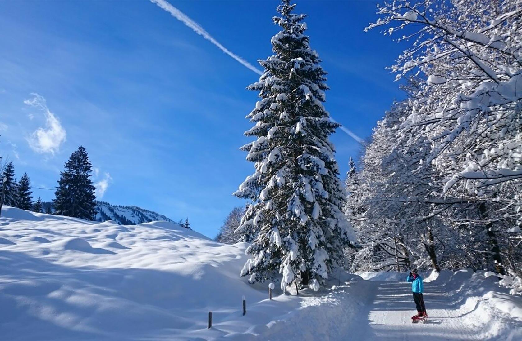 Tannheimer Tal in Tirol für den Wanderurlaub im Winter