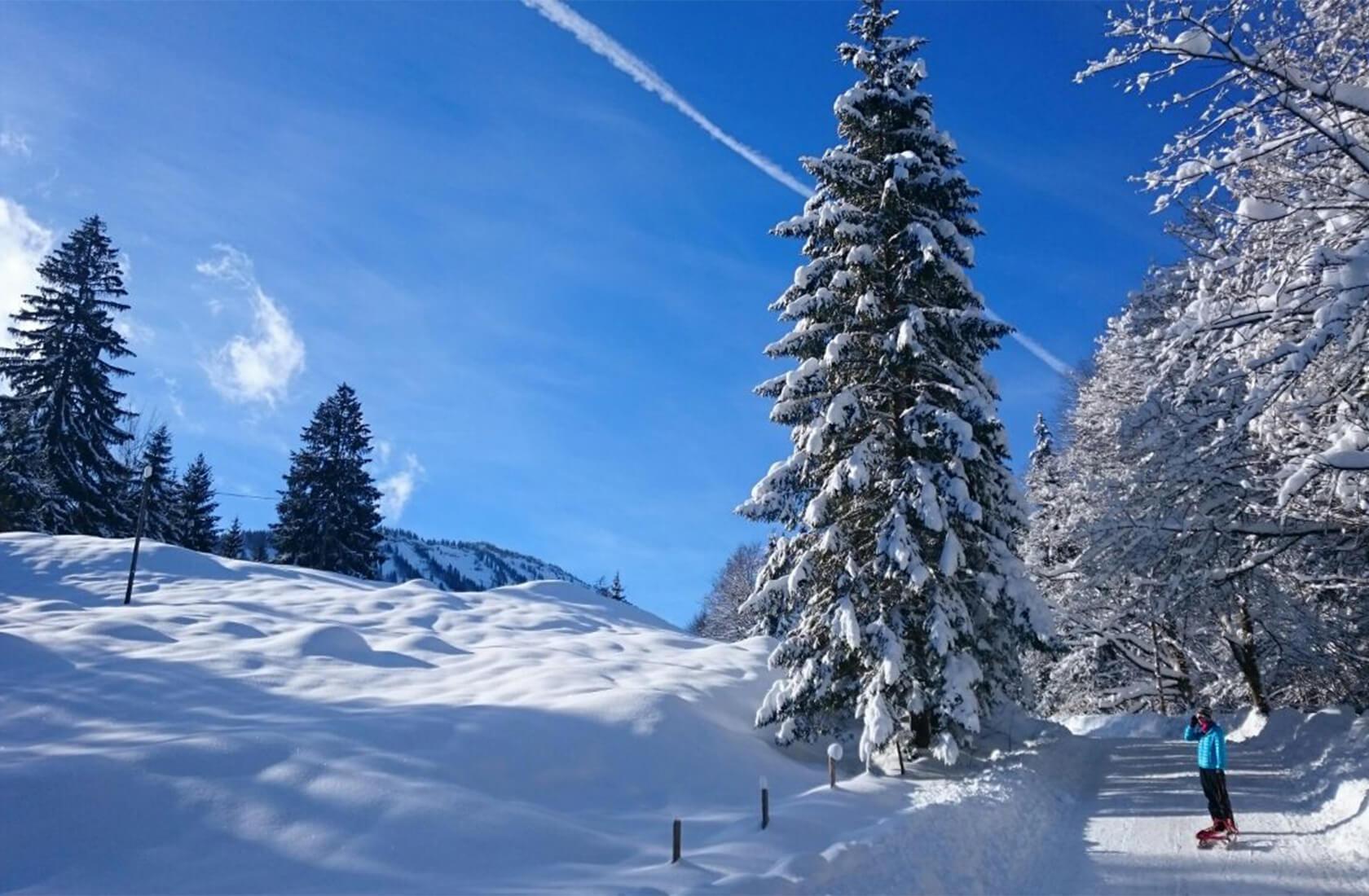 Winteraktivitäten am Haldensee