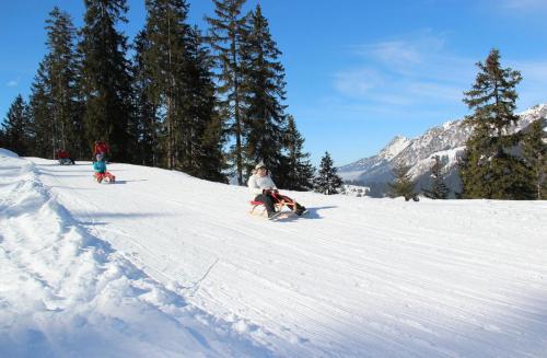Rodeln & Schlittenfahren im Winterurlaub am Haldensee im Tannheimer Tal