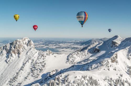 Ballonfestival im Tannheimer Tal in Tirol